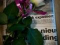 opening reizende expositie-Pieterburen (12)