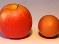 Voor een appel en een ei - Willem